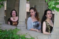 Actuación en el Castillo de Olite con Ensemble Más que Voces