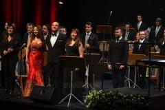 Orquestas y bandas sinfónicas15