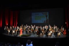 Orquestas y bandas sinfónicas16