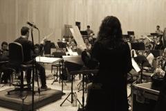 Orquestas y bandas sinfónicas18