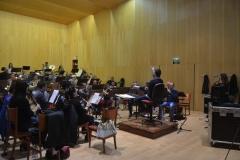 Orquestas y bandas sinfónicas19