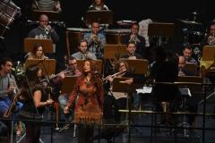 Orquestas y bandas sinfónicas22