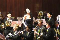 Orquestas y bandas sinfónicas24