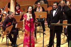 Orquestas y bandas sinfónicas26