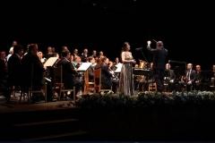 Orquestas y bandas sinfónicas27
