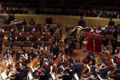 Orquestas y bandas sinfónicas29