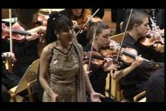Orquestas y bandas sinfónicas31