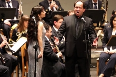 Orquestas y bandas sinfónicas33