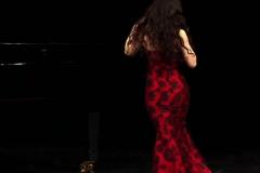 Recitales con piano249